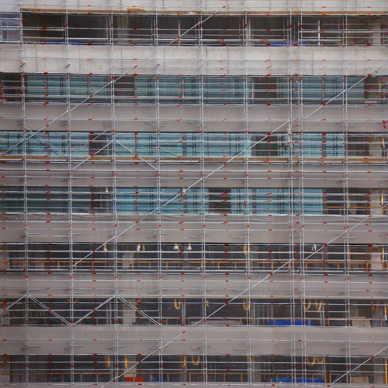 This is Auckland the Construction Boom is Real Appartment Sites Everywhere Built Structure, Scaffolding and what not