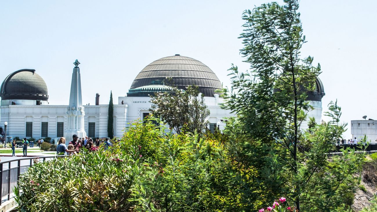 Griffith Observatory in Summer - From our tour Cali California City Friendlylocalguides Griffith Landscape Losangeles Mustsee Observatory Panorama Panoramic People Summer Trees USA Views