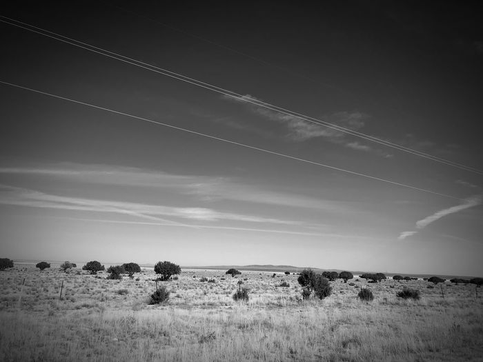 """""""High Wire Act"""" Power lines dance above the open grassland plains and scattered Junipers of Central New Mexico. New Mexico Skies New Mexico Photography New Mexico Clouds And Sky Juniper Grassland Black And White Photography Black And White Landscape Nature Field Vapor Trail Scenics Tranquility Beauty In Nature"""