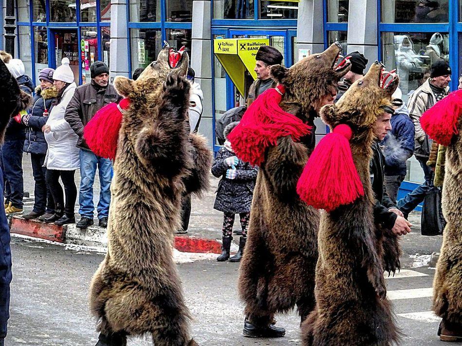 Romania Romanian  Tradition Traditional Heritage Culture Folk Bear Season  Winter Travelling Photography Sociography