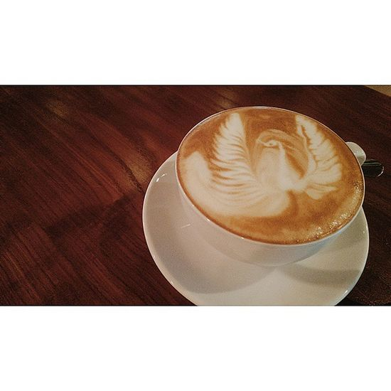 Just...a throwback. Coffeeless days.... Coffee Thelibrary Life Phoenix peacock Ithink coffeeart FOAMMSSSSS likeakid random