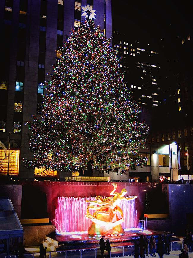 Showcase: January Rockerfeller Rockerfellercenter Christmas Tree Ice Skating NYC Photography NYC New York The Tourist Cities At Night Battle Of The Cities The Culture Of The Holidays