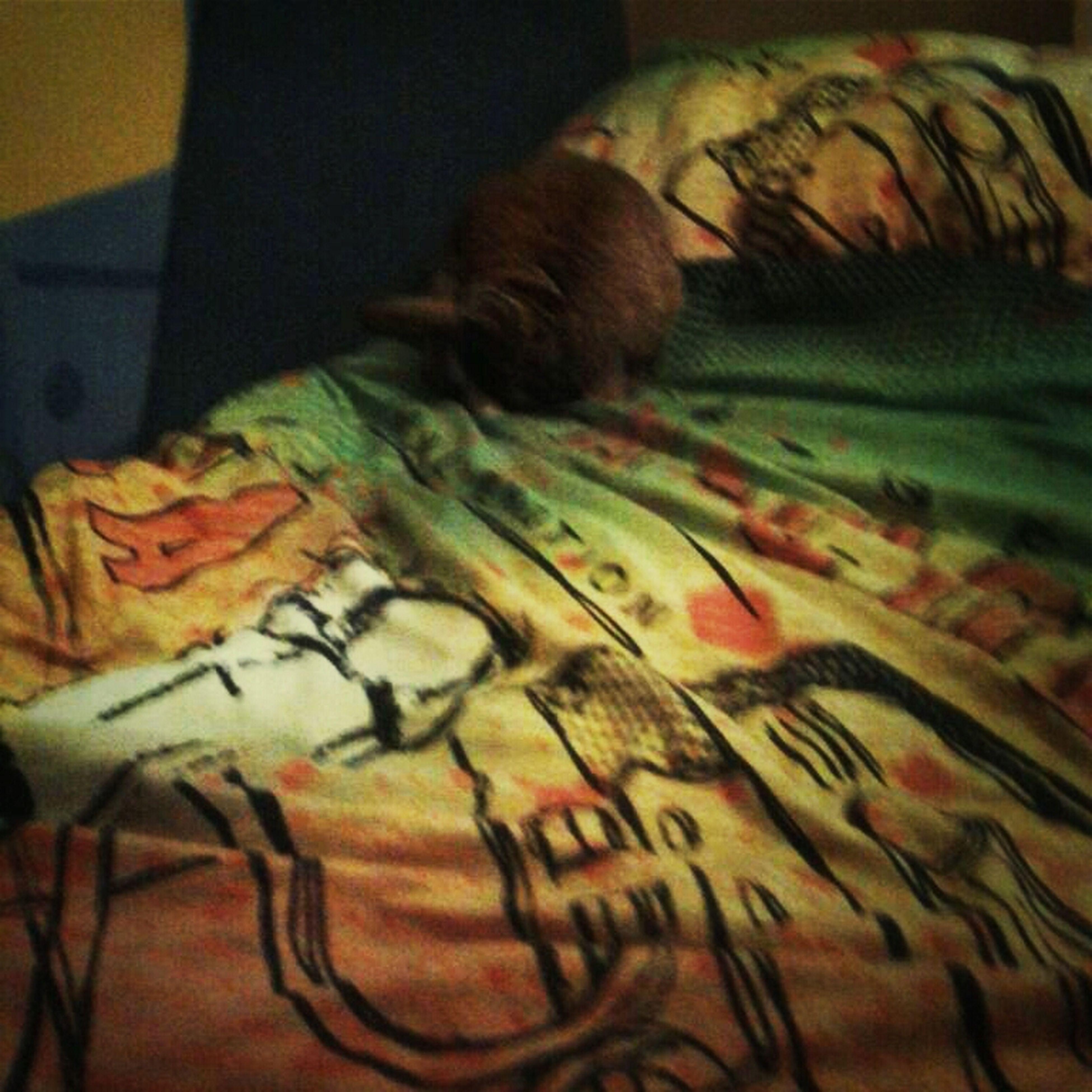 Eier  Lecken Auf Meinem Bett !!