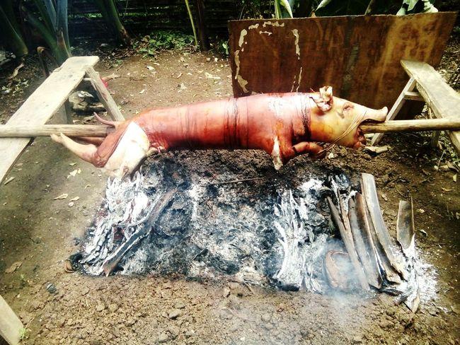 Letchonbaboy! The philippine food 🐖👌 Siargaoisland