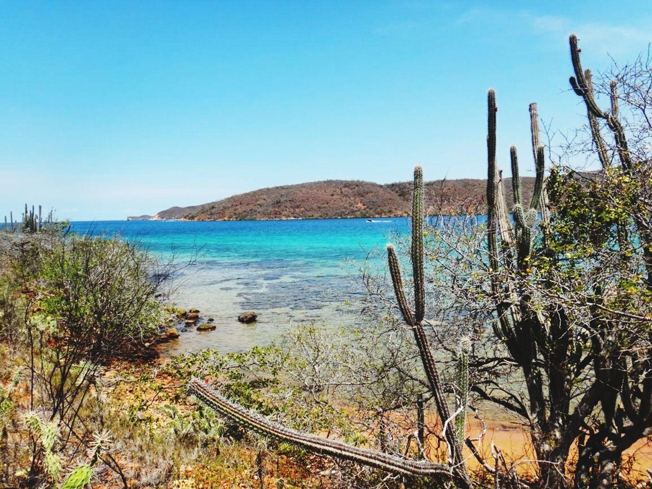 Venezuela Mochima Vitaminsea First Eyeem Photo Showcase July Venezuela_captures Nature Beauty Nature Textures Beachphotography