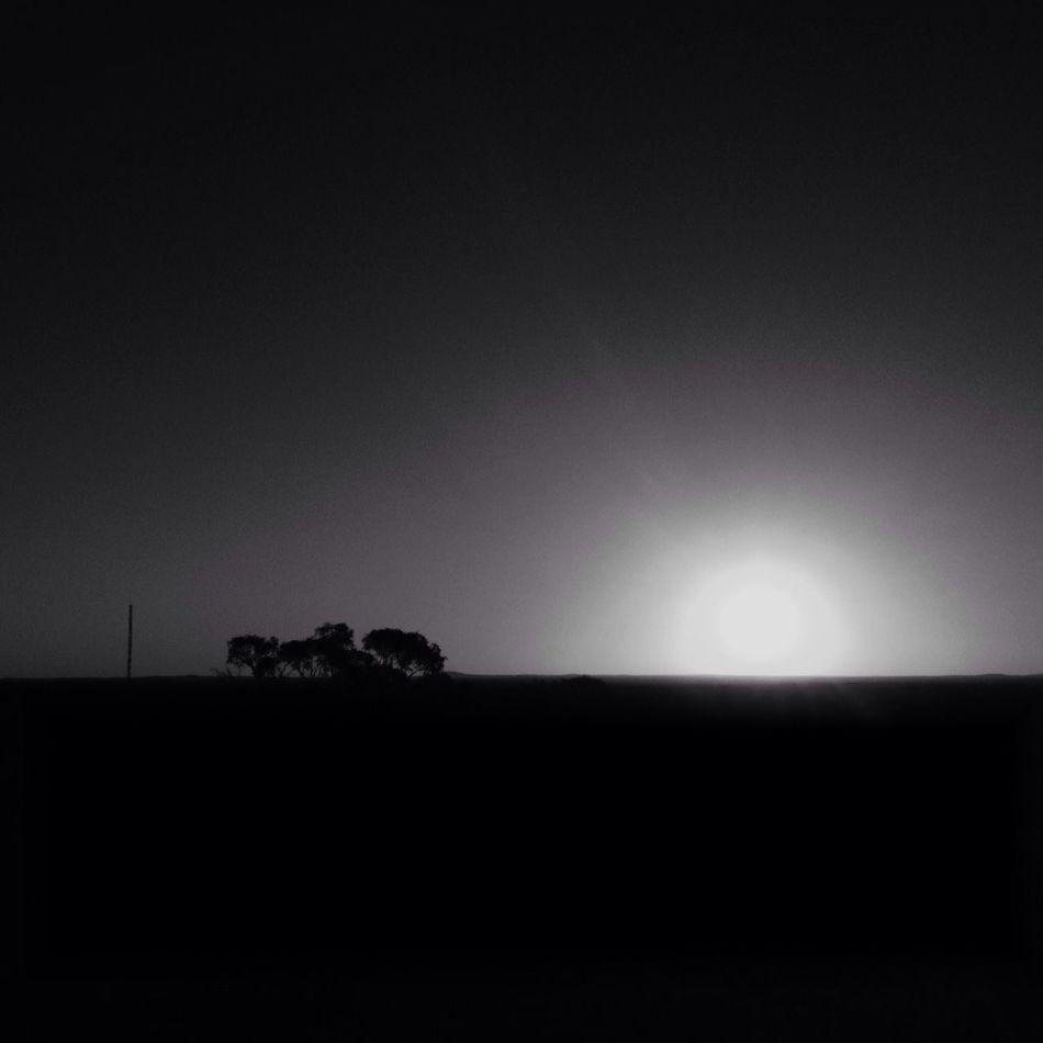 IPSSun Black And White Silhouette