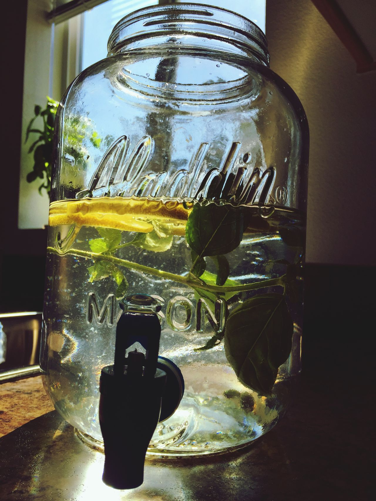 """Makin' Sun Tea"" Filtered fresh water...check...lemon slices...check...fresh basil...check...just add tea bags and set in sun all day. Suntea Tea Icetea Still Life StillLifePhotography Enjoying Life Summer Newmexicophotography NewMexicoTRUE Summertime NewMexcio"