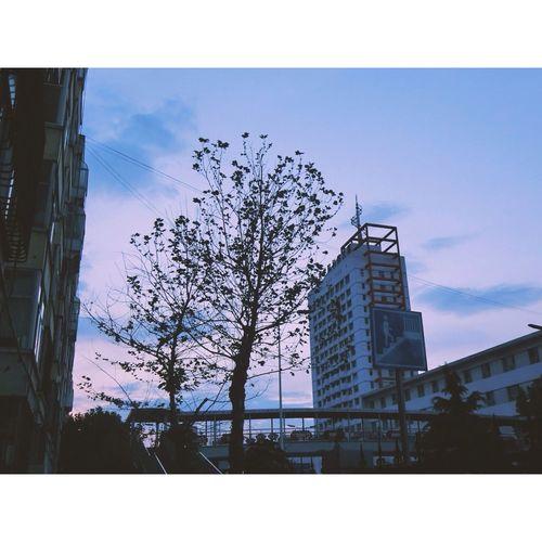 😋 Enjoying Life