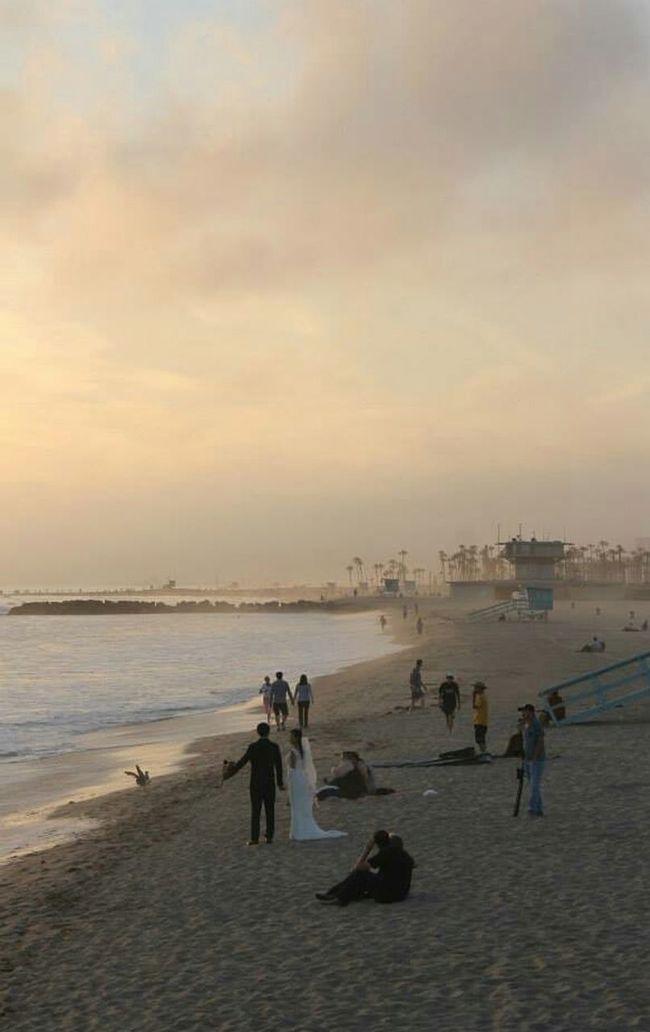 Beach Wedding Venice Beach California Love Sunset On Beach