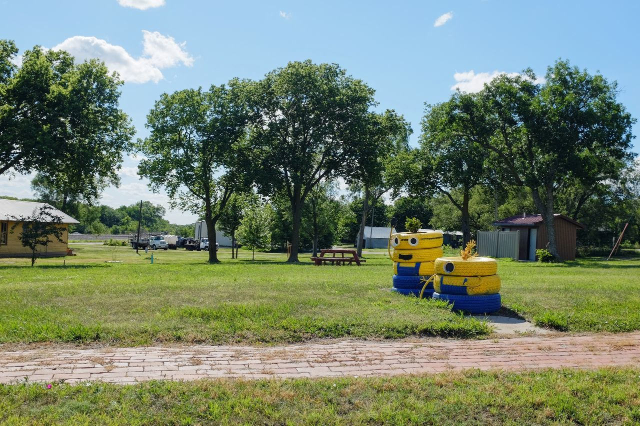 tree, day, field, transportation, sky, land vehicle, outdoors, no people, grass, growth, nature