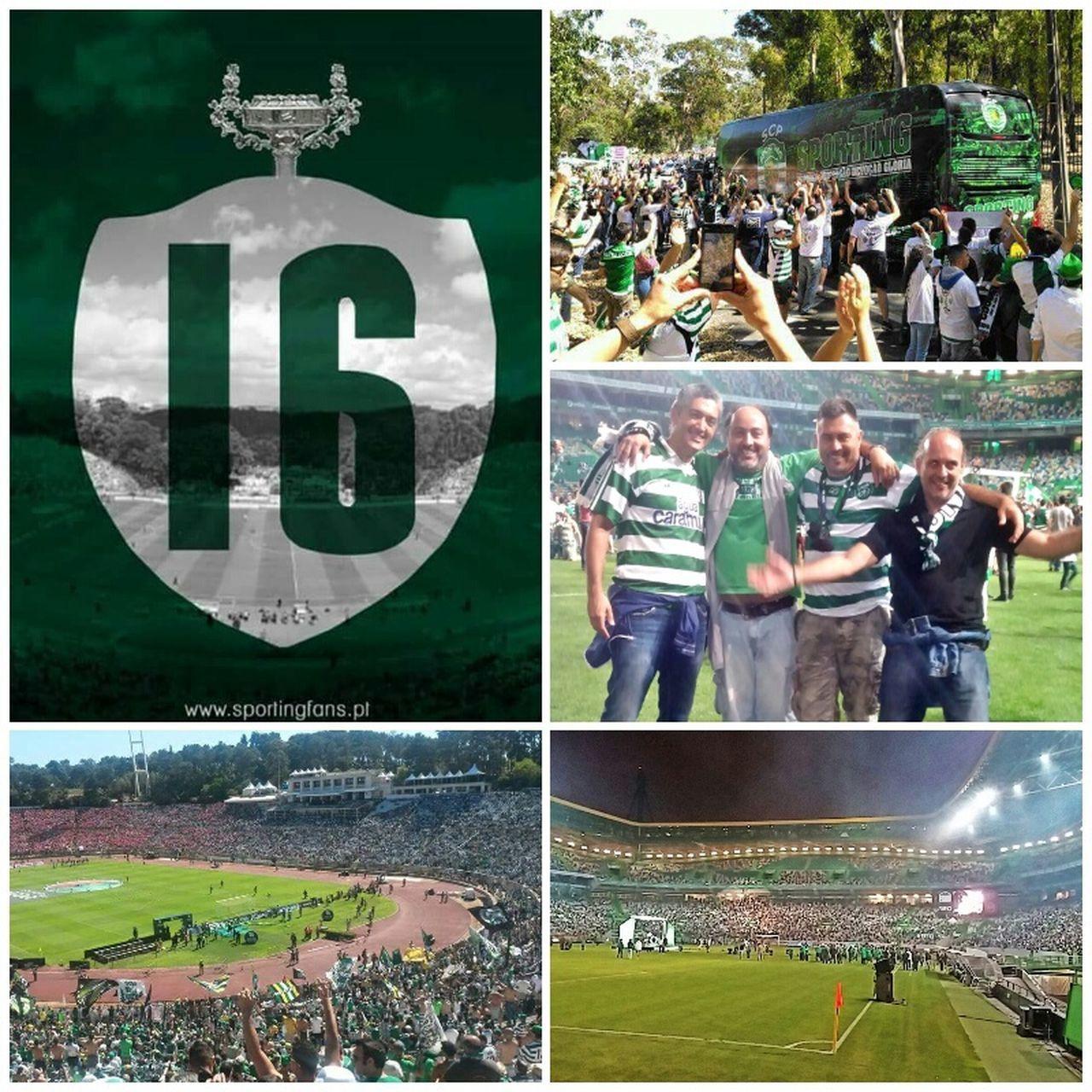 O CANECO é Nosso TaçaDePortugal Sportingclubeportugal Sporting Clube Portugal Juventudeleonina SportingCP Sporting CP Epico Respirando Verde!  Fans EmModoJamor