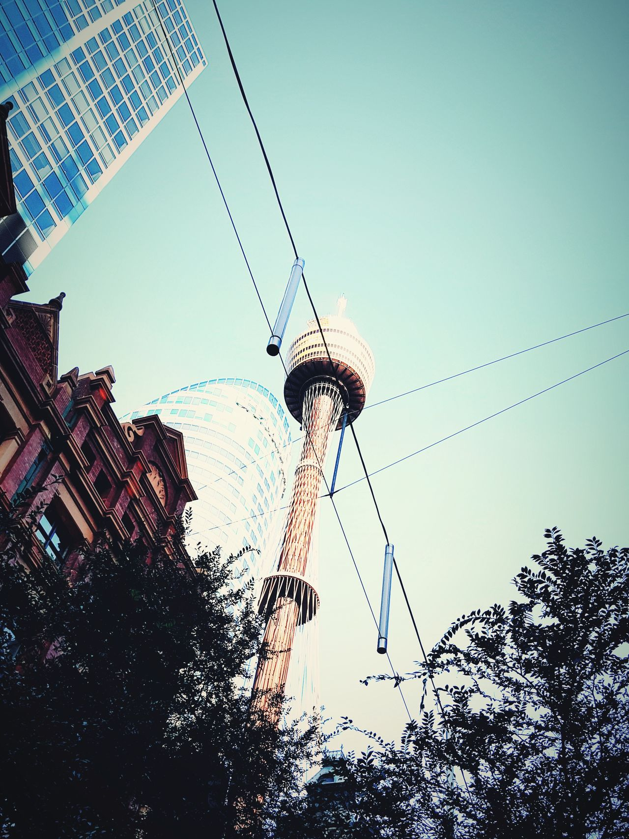 Low Angle View Sky Technology No People Outdoors Day Sydney Tower