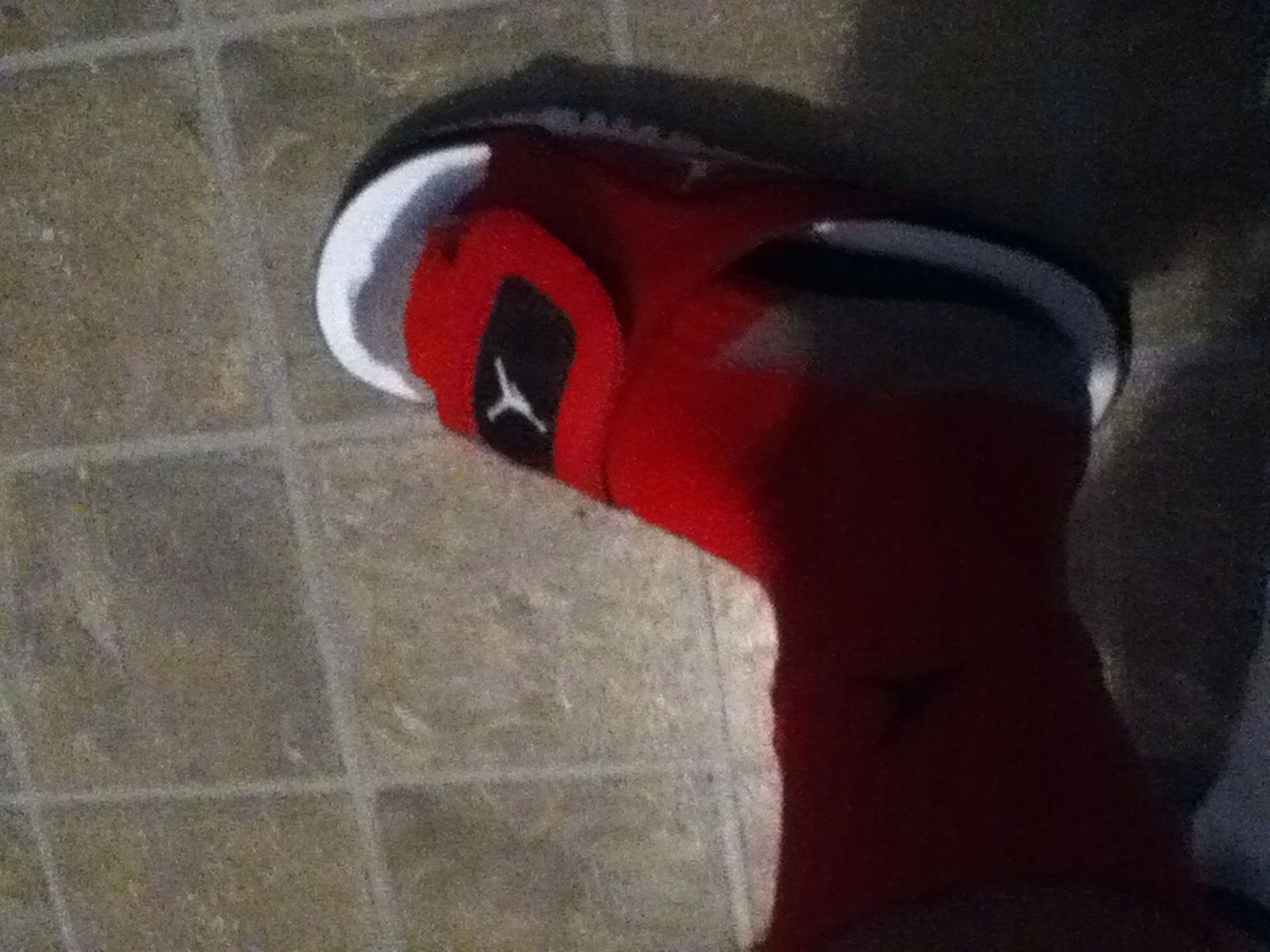 indoors, low section, red, person, lifestyles, shoe, close-up, part of, leisure activity, men, personal perspective, high angle view, unrecognizable person, human foot, footwear, standing