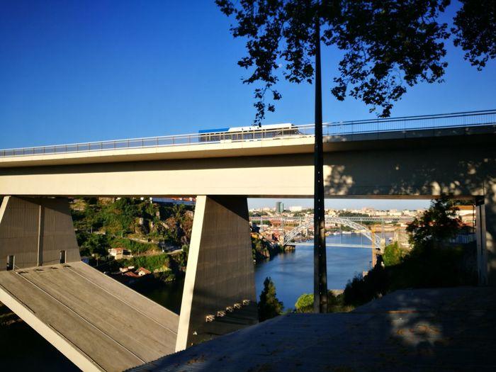 Portugal Porto Oporto, Portugal Northofportugal Nature Photography Douro  Douroriver Summer ☀ 2016 EyeEm Gallery