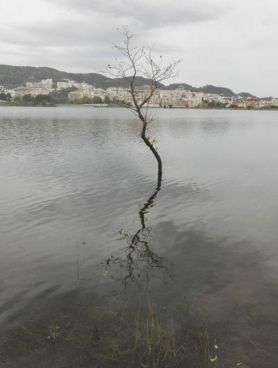 Reflection Reflection Reflection Lake
