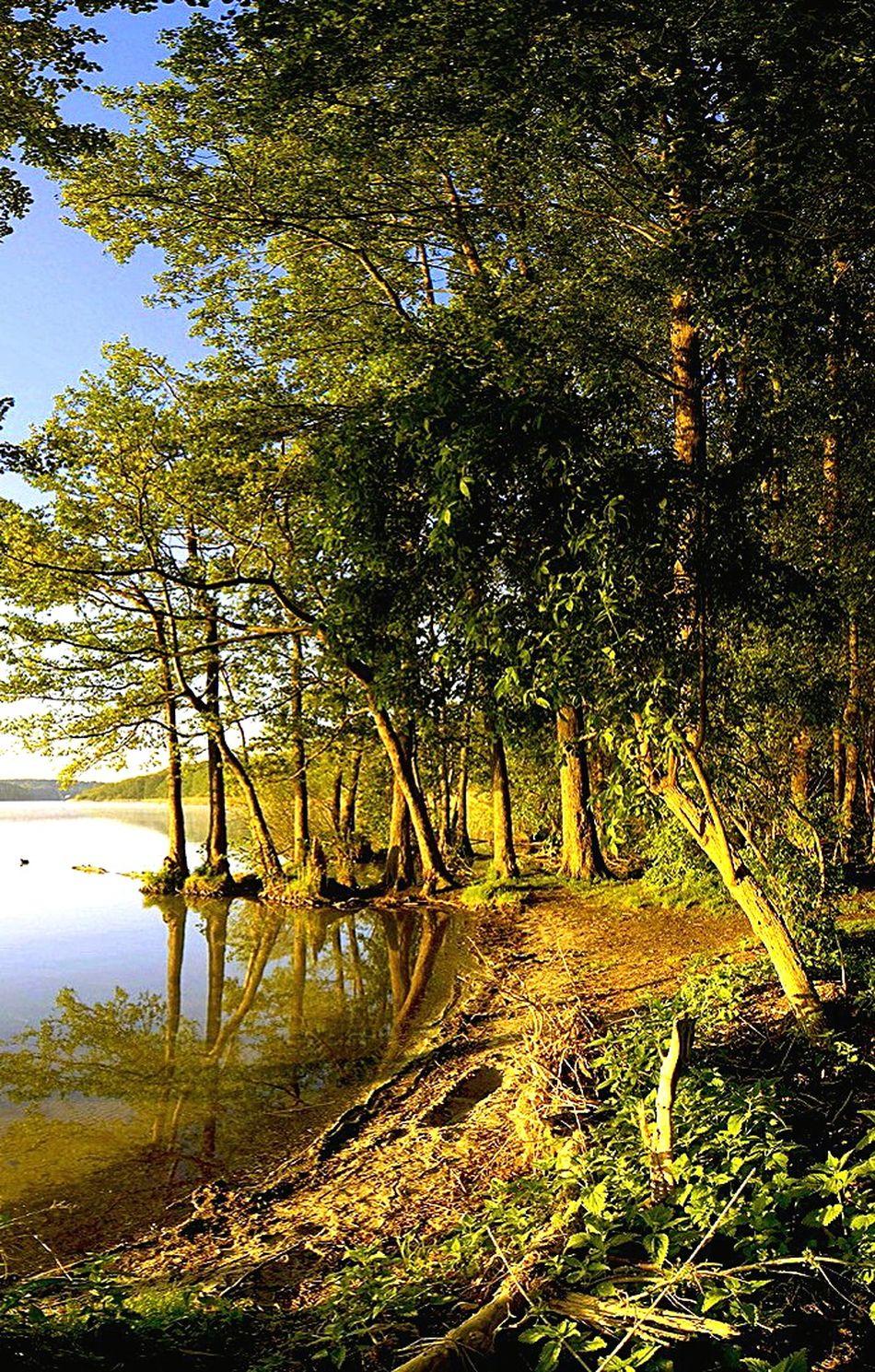 Eyeem Nature Lover. Open Edit. Taking Photos. EyeEm Best Shots - Landscape Beautiful Nature River Side.