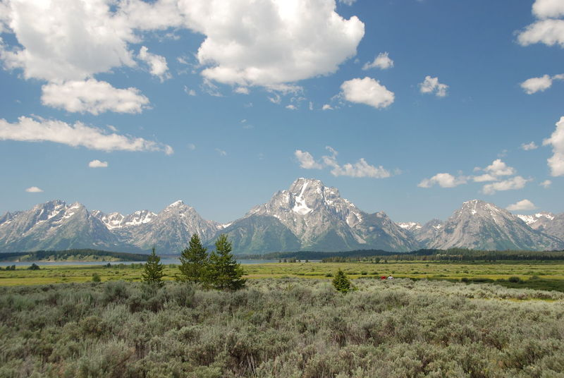 Beauty In Nature Beauty In Nature Cloud - Sky Day Fields Grand Tetons National Park Landscape Meadow Mountain Mountain Peak Mountain Range Nature No People Outdoors Pine Trees Scenics Sky Snow Travel Destinations Travel Destinations Outdoors Relaxation Wide Open Spaces