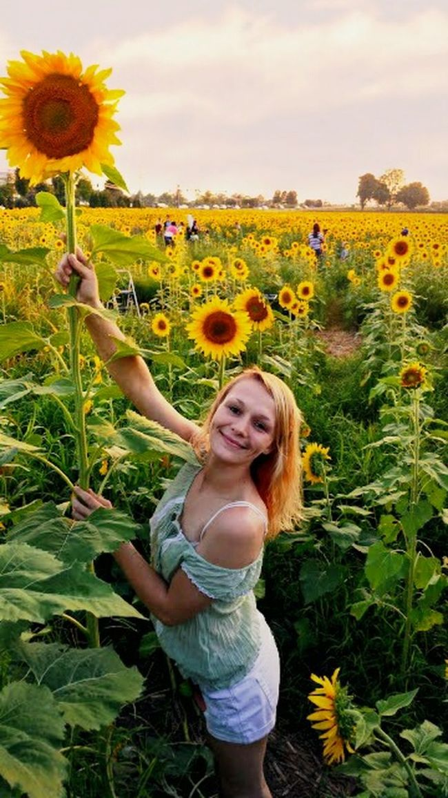 Urban Spring Fever- Springtime ,march Showcase Flowers Outdoors Season  Spring Into Spring - my daughter in a beautiful sunflower field by my home in MURFREESBORO.,Tennessee