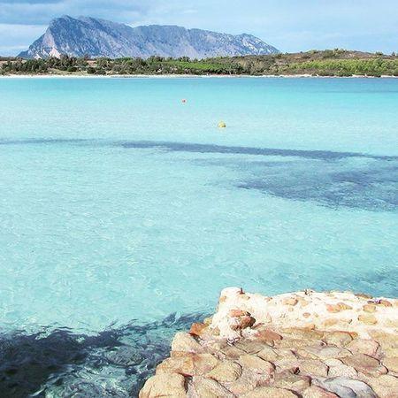 Aloha 🙌 Sardegna Sardinia Sardiniaexperience Onephotonelife