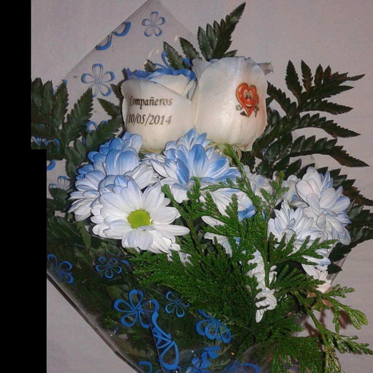 Ramito con rosas azules tatuadas en el petalo y margaritas azules a juego. Www.graficflower.com Rosasazules Rosaadomicilio Rosastatuadas Rosaazul Rosaspersonalizadas RegaloDeCumpleaños Regalodeaniversario Regalooriginal Regalos Regalarflores Regaloaniversario Ramoderosas Ramodeflores  Ramosderosas