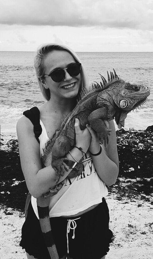 Cozumelmexico Messico  Carribean Sea Cozumel Sea Iguana Animals Love Loveanimals Nature