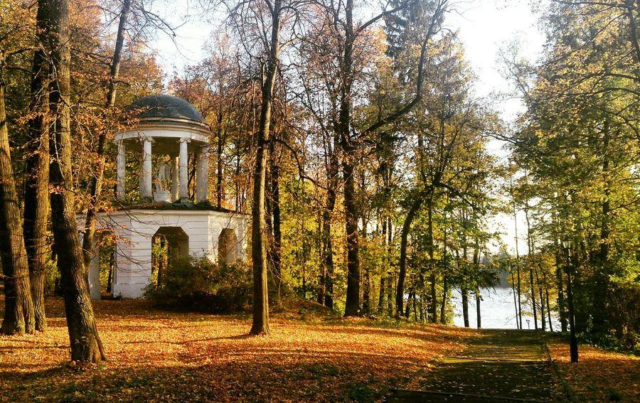Autumn Landscape Naturelovers Autumn Colors Authentic Moments Relaxing