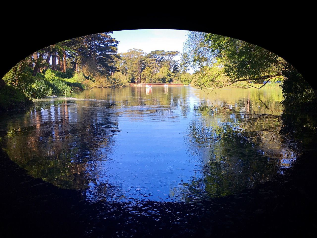 reflection, water, arch, day, tree, no people, nature, tranquility, built structure, outdoors, architecture, beauty in nature, under, sky
