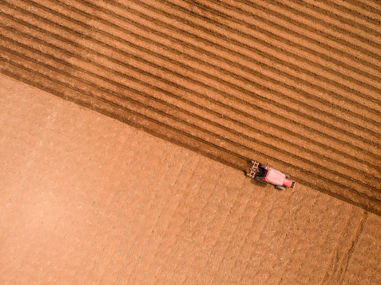 Day Flying High Nature No People Outdoors Sand Sand Dune