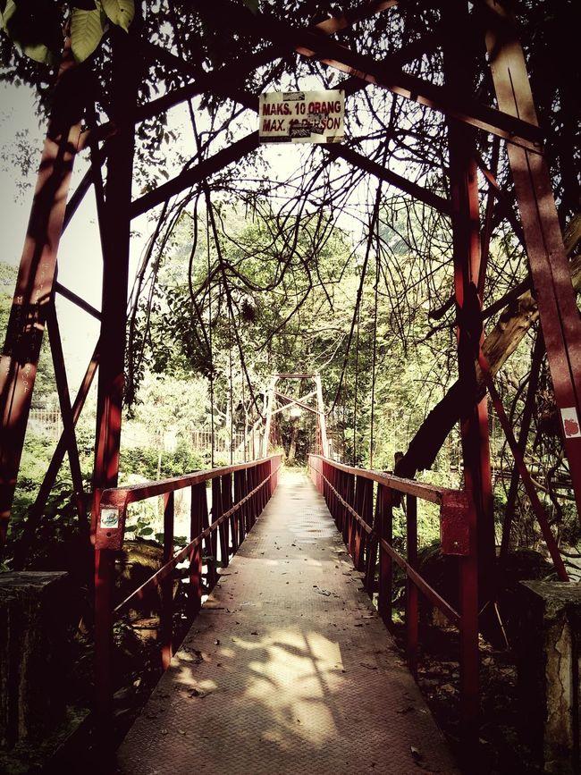 Bridge to nowhere... Bridge Red Bridge Garden Botanical Gardens Bogorcity Outdoors Phonecamera PhonePhotography Amateurphotographer  Vintage Structures