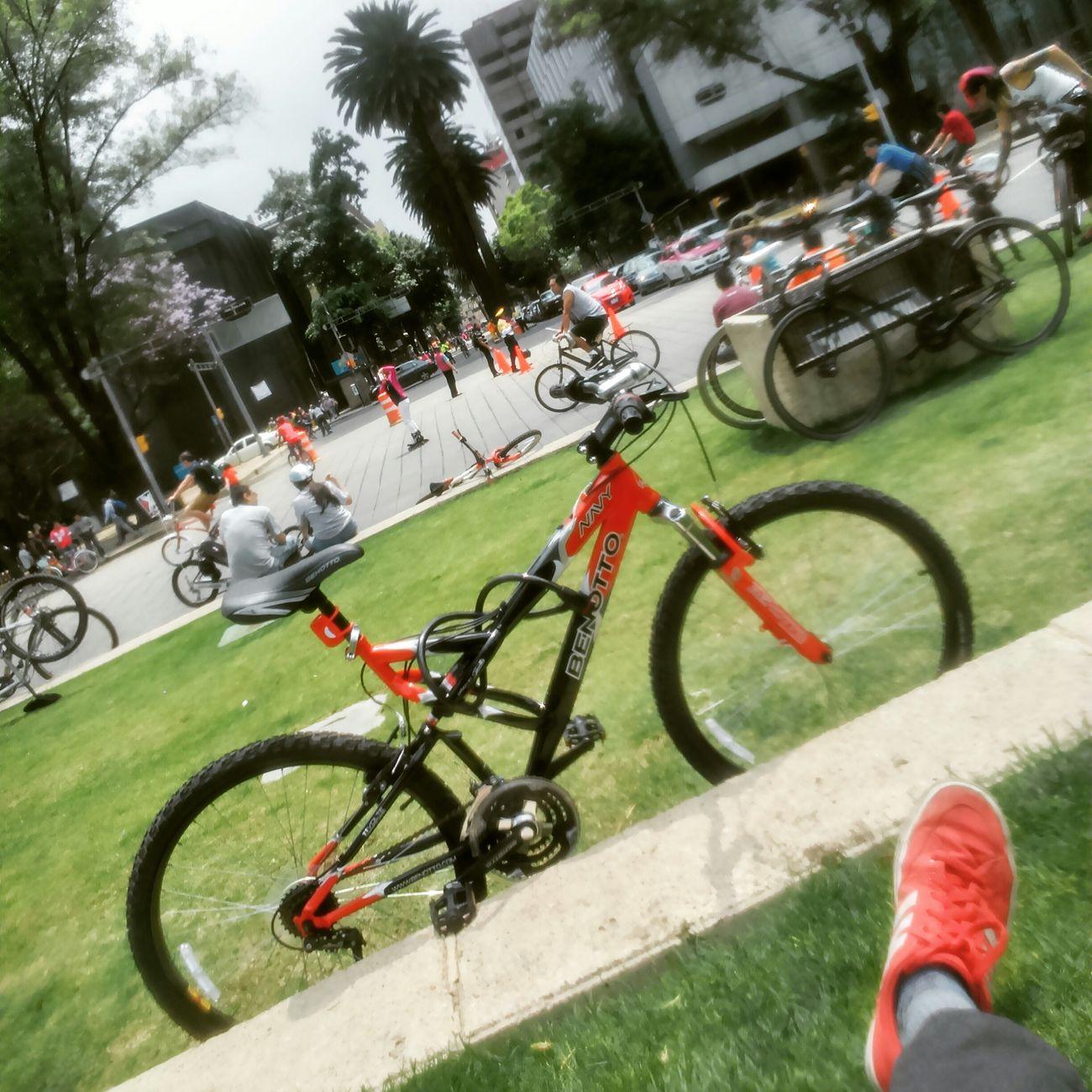 UnDomingoEnElCiclotón 38km Relax Final RunningBike BenottoNavy 🚲📷✌