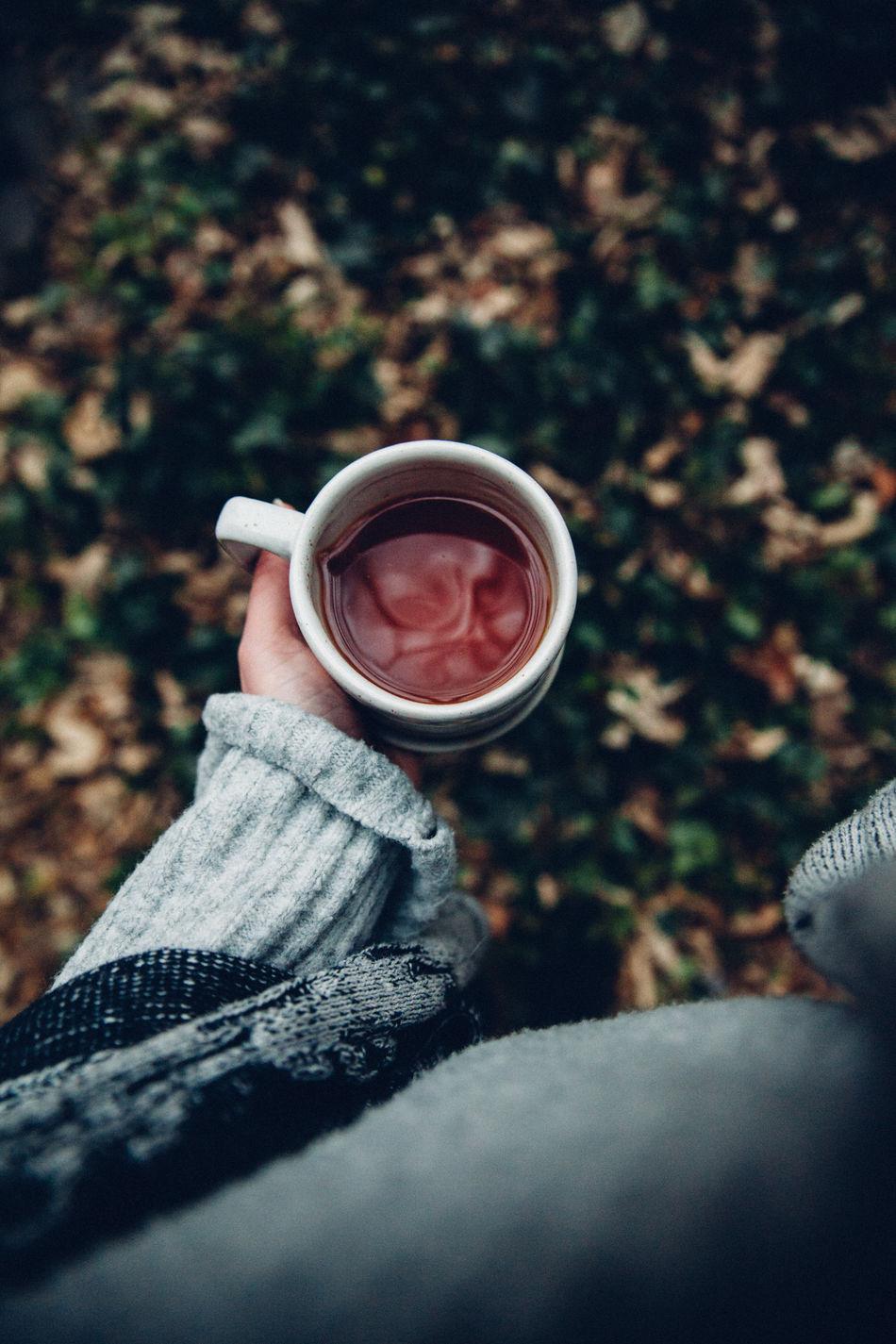 Drink Holding Human Hand Tea Tea Time