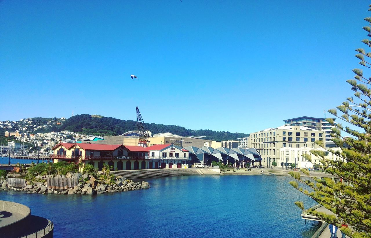 Wellington Harbour Hanging Out Check This Out Wellington  Wellington Harbour Wellington Nz Beach Water Ocean Scenery First Eyeem Photo