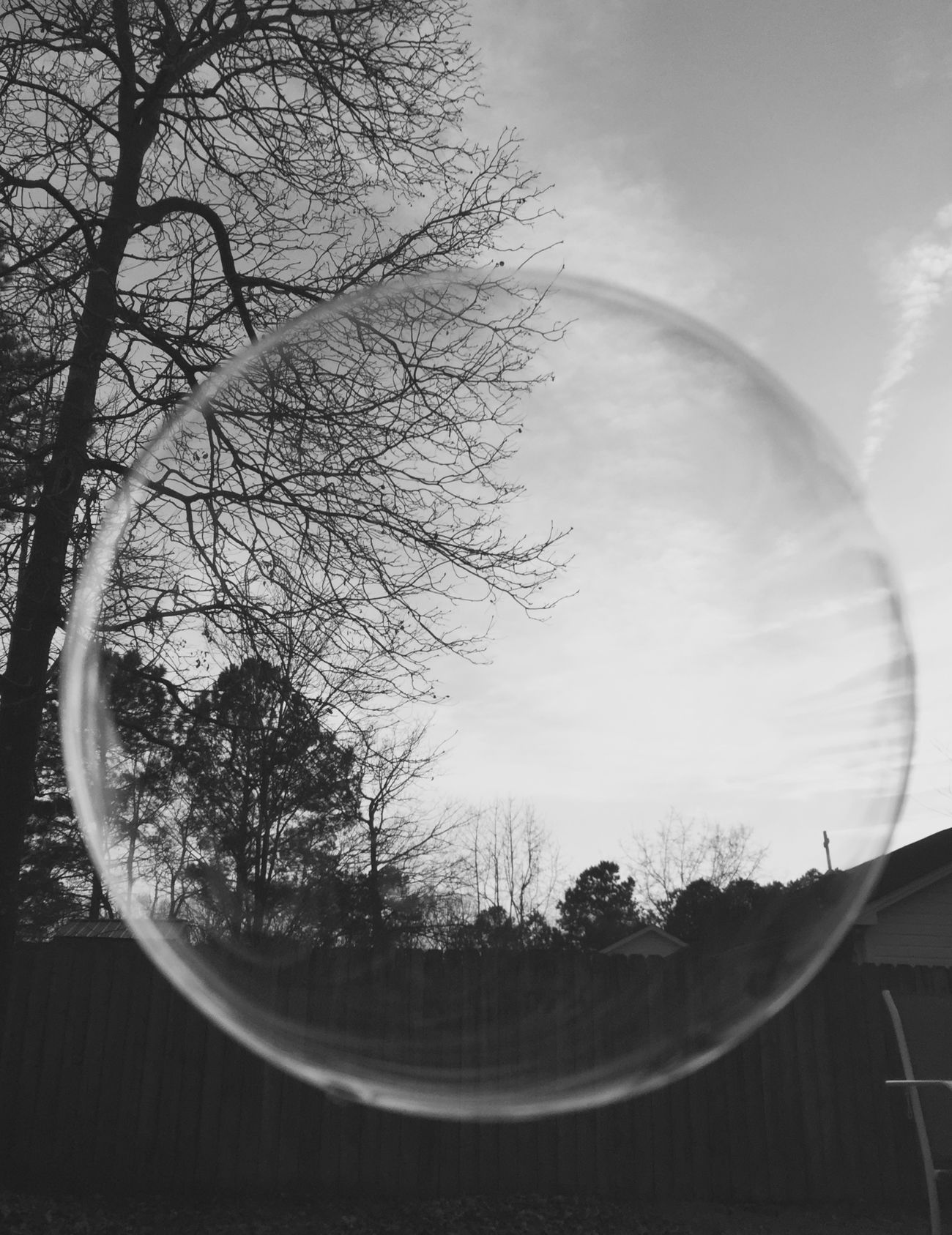 #Bubbles Monochrome