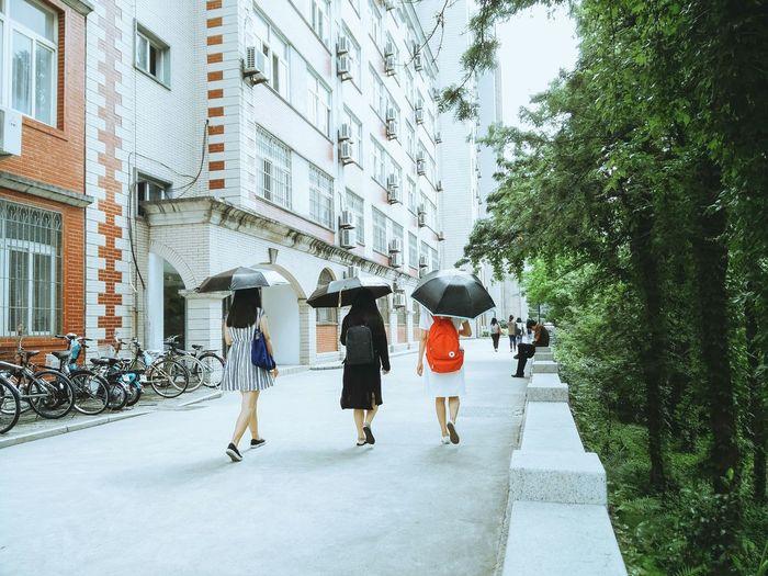 On Campus Campus Life Campus At University