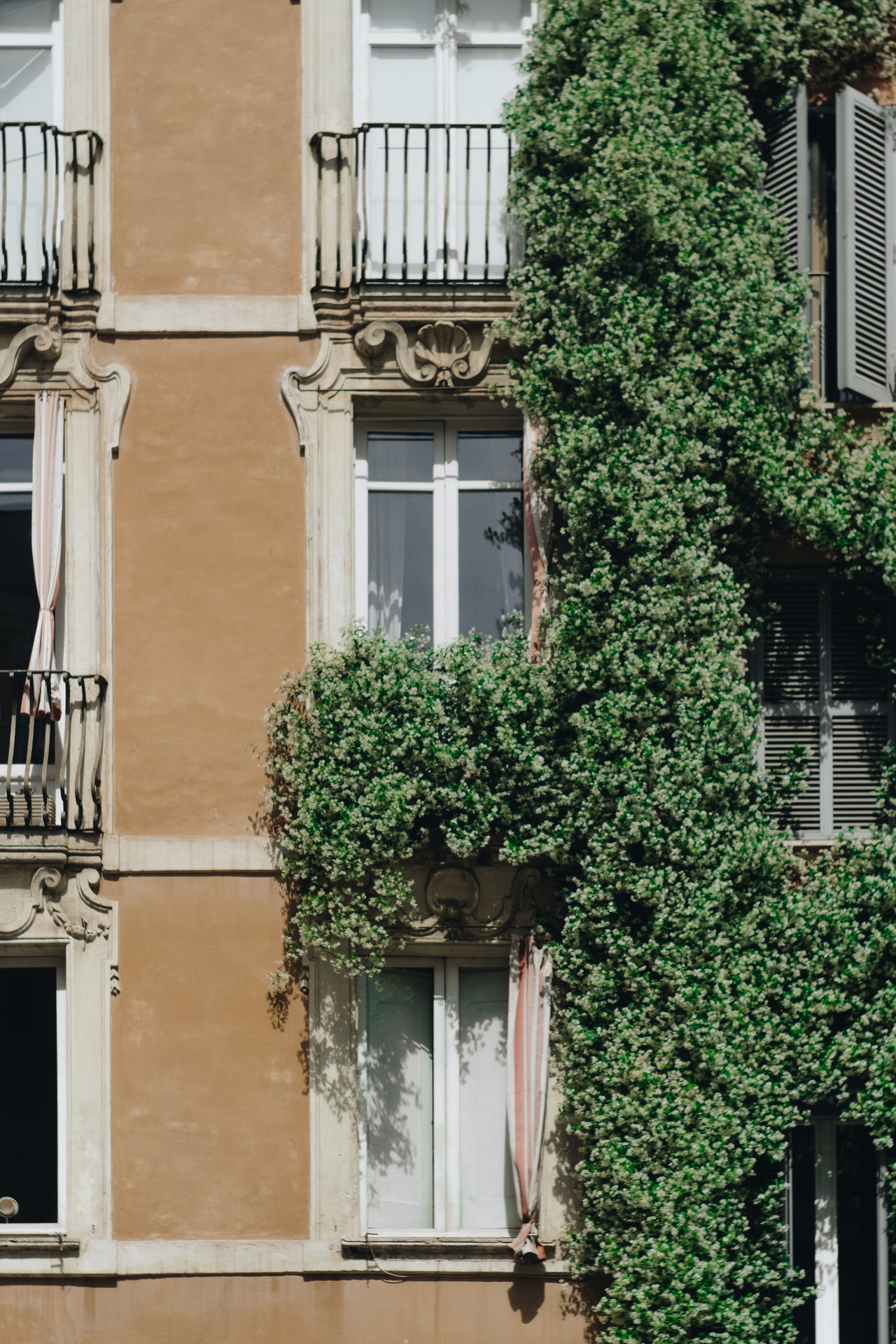 Architecture Architecture Building Exterior Built Structure Day Green Plant Home Italy Living Living Style Nature Organized Outdoors Pastel Colors Plant Rome South Travel Destinations Travel Photography Tree Vacations Vertical Window Windows Windows_aroundtheworld