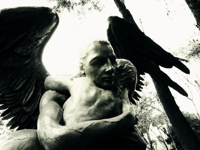 Allmylove Angel Angels Borgiante Love Love ♥ Mexico Mexico City