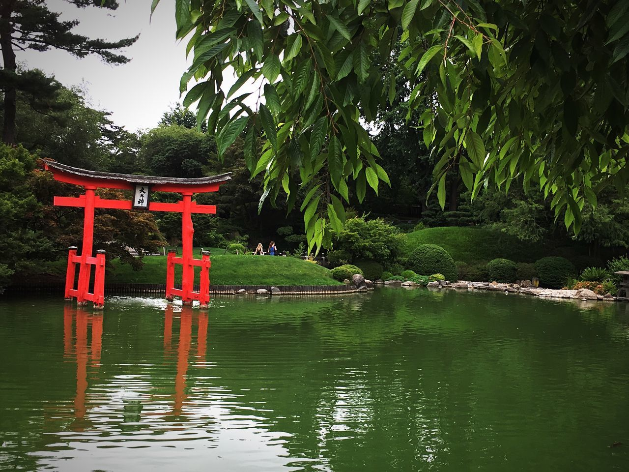 Japanese Garden Botanical Gardens Prospect Park Brooklyn New York City Green Tranquility Urban Escape Hidden Gem Pond Garden Park
