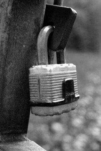 Padlock Security Blackandwhite EyeEm Best Shots - Black + White Lock Keepout Secure