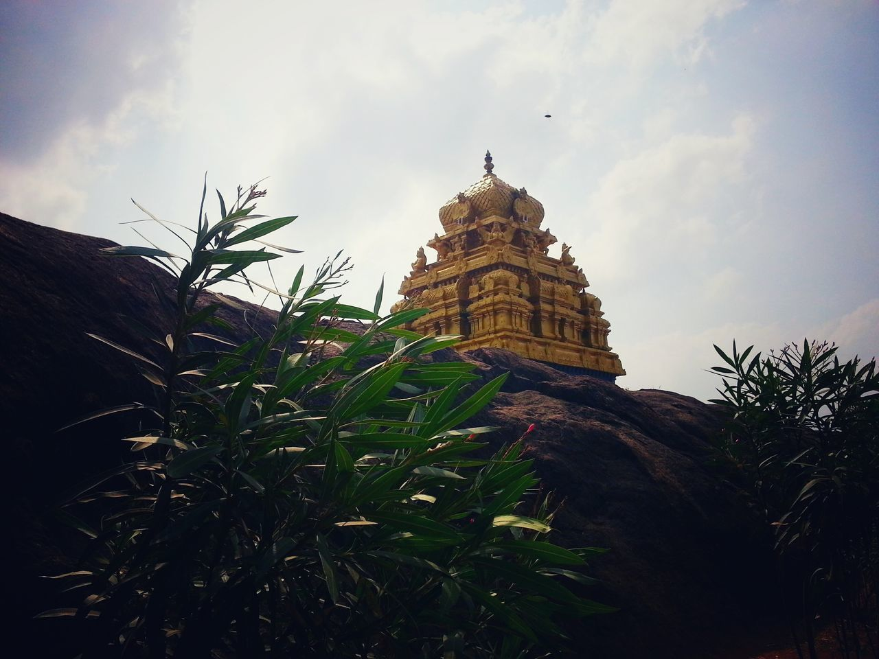 Religion No People Tree Outdoors Day Temple - Building Temple Tower EyeEm Best Shots Sunlight Golden Temple Sky_collection Rocks