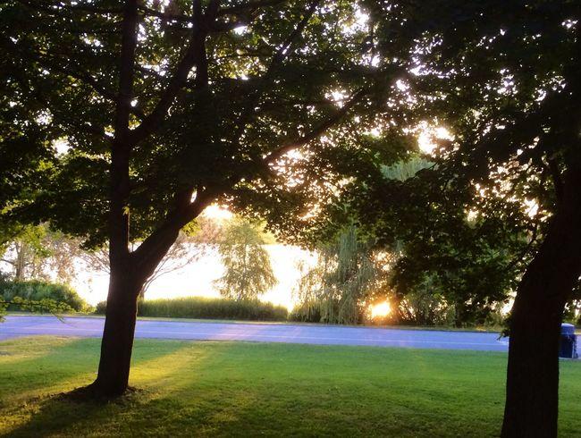 The amazing Beautiful Sunset at Greenlake tonight