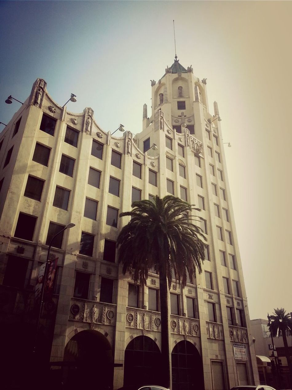 Everybody goes to Hollywood...they wanna make it in the neighborhood Tower Palmera <3