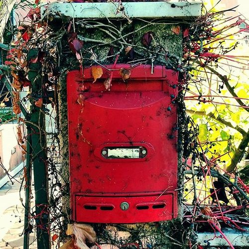 Waiting for a long time... Red Vintage Igers Letterbox Postcards Post Outoftime