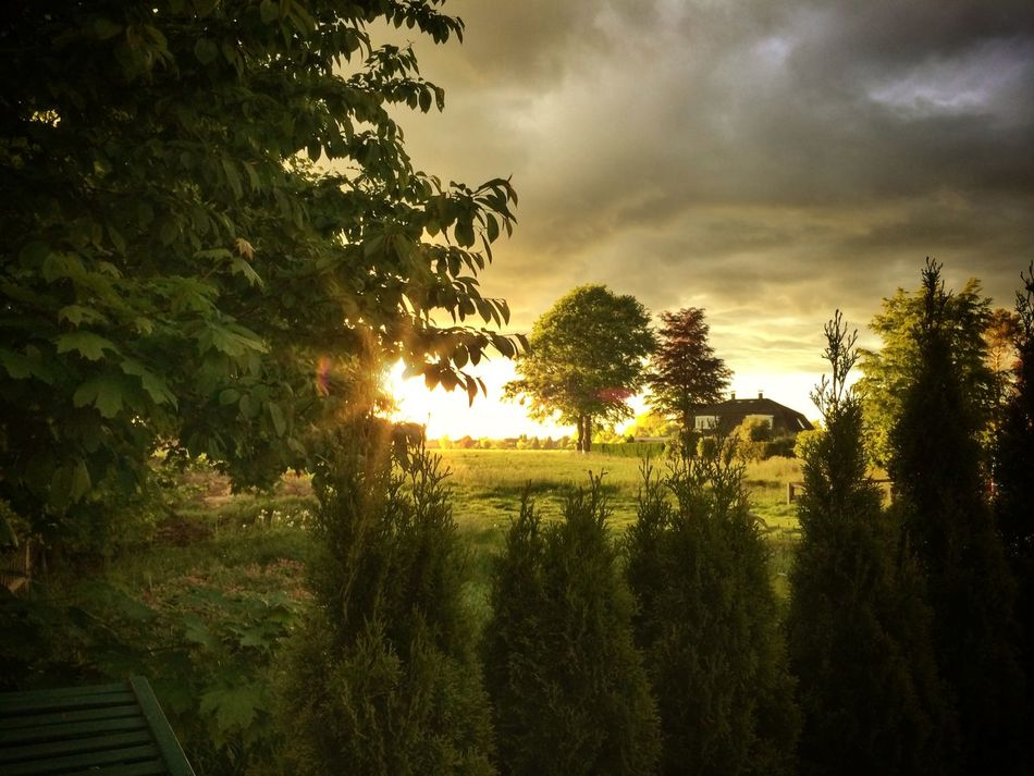 home. view. now Landscape Sunset Relaxing Sunset_collection
