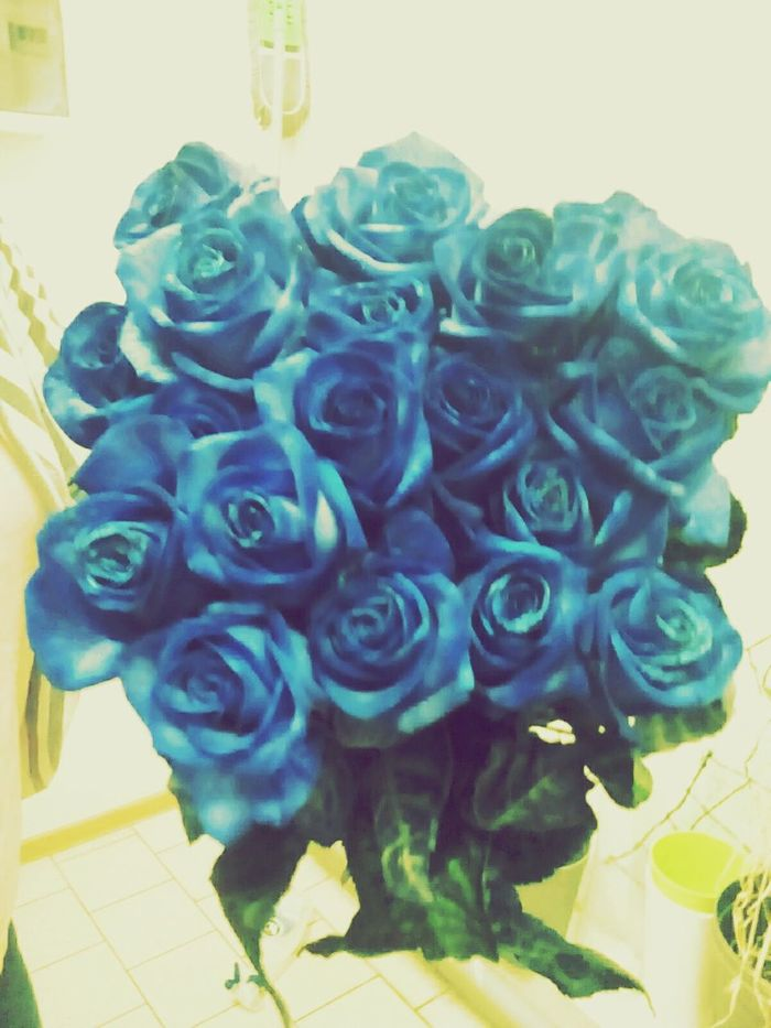Love flows like flowers and grows like water. Hanging Out Check This Out Hello World Relaxing Hi! Enjoying Life Q Life Love Mankindisone Roses Blue @Moochi Lilled