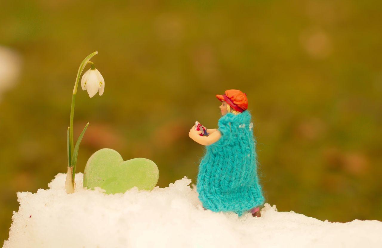Wintertime Winter Wintertime Winterwonderland Schneeglöckchen Snowdrop Photographer Cold Snow Camera Sony Miniature Miniatur Wunderland Eye4photography  Photooftheday The Week Of Eyeem Knit Cape  Heart