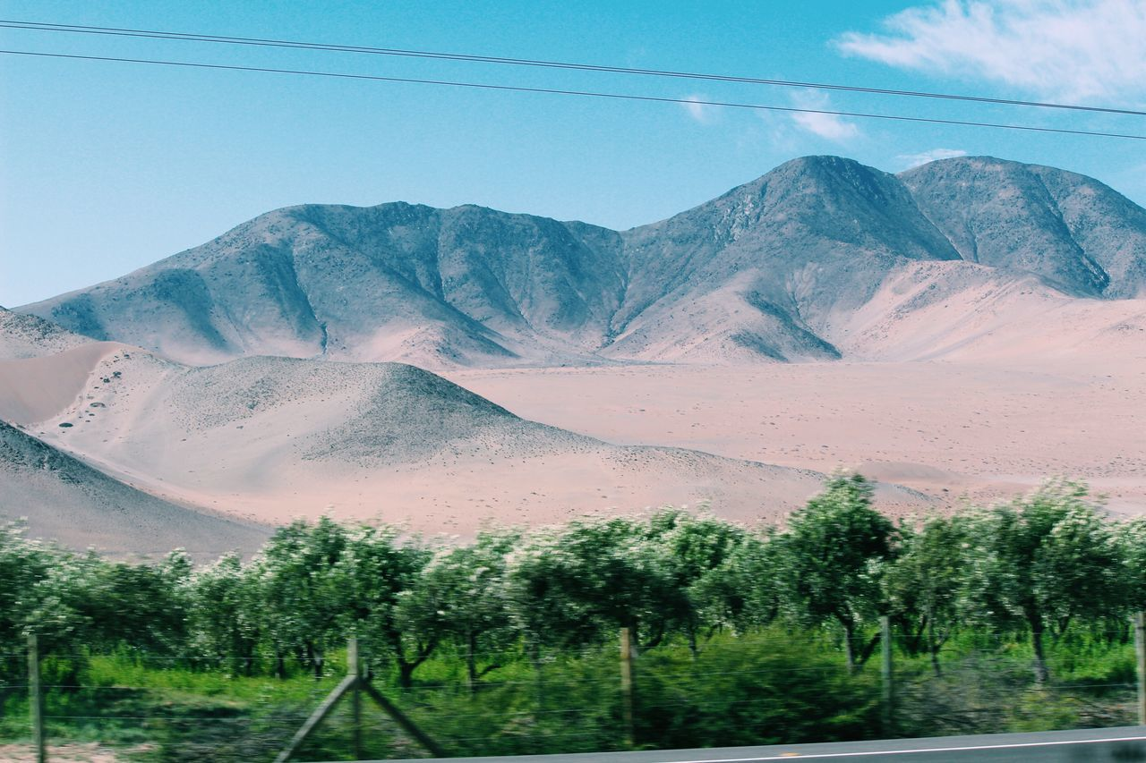 // 29 • Nov // Check This Out Southamerica Copiapó Canon Mine Chile♥ Travel Photography 35mm Film Desert Mountains Andes Myhome Green Contrast Vineyard Mapuches