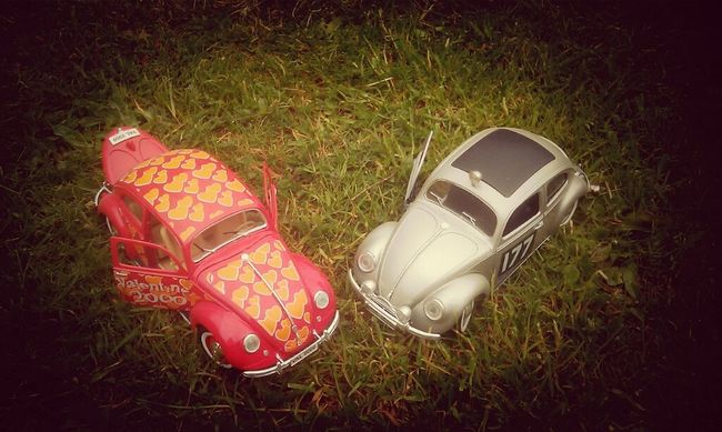 the love bugs Two Of A Kind
