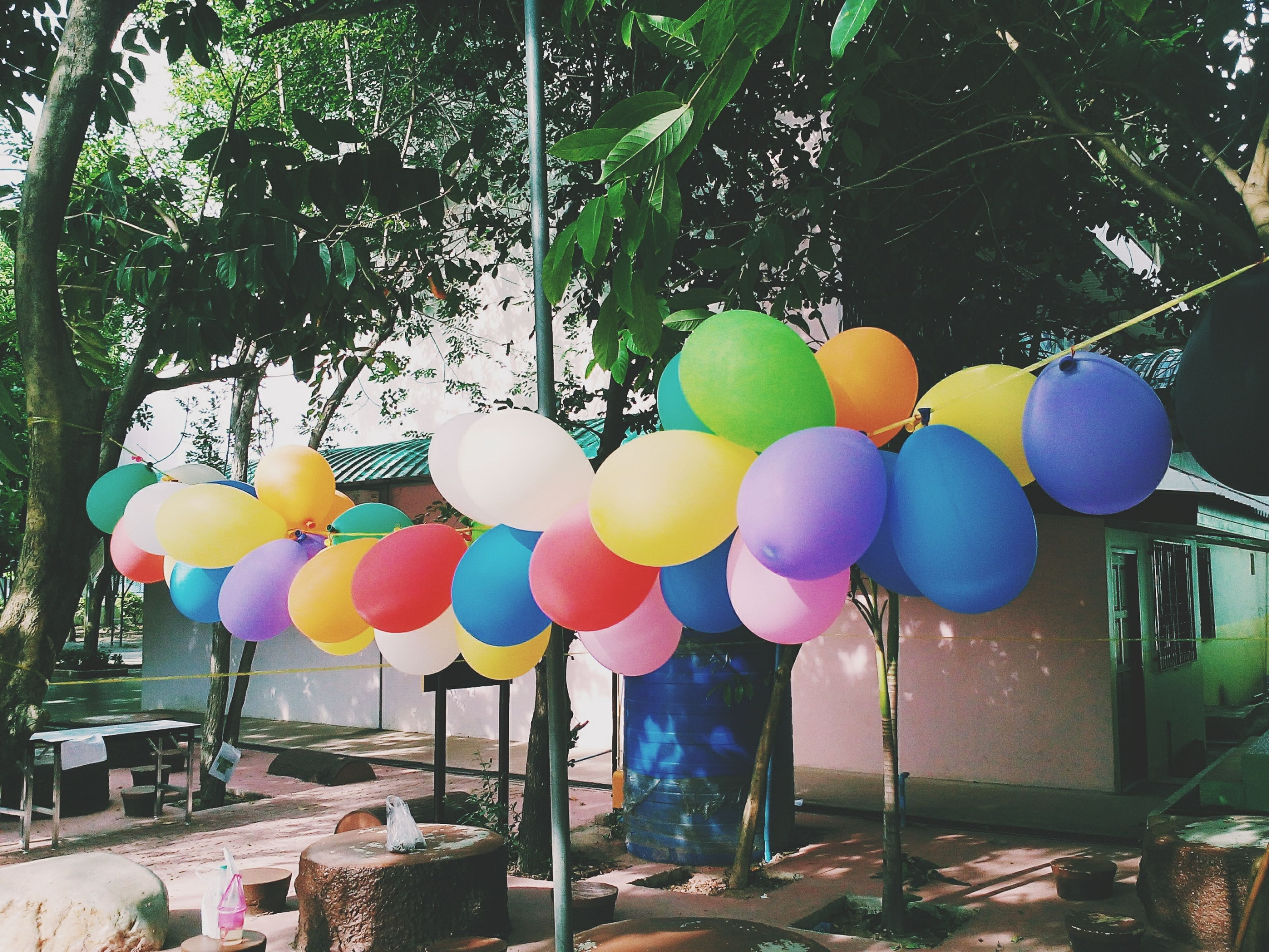 multi colored, hanging, decoration, variation, tree, balloon, colorful, celebration, in a row, art, art and craft, creativity, sunlight, day, sky, no people, lantern, large group of objects, built structure, outdoors