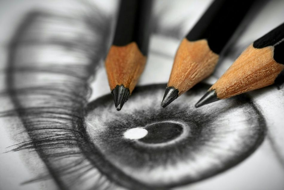 Beautiful stock photos of drawings, close-up, indoors, selective focus, extreme close-up