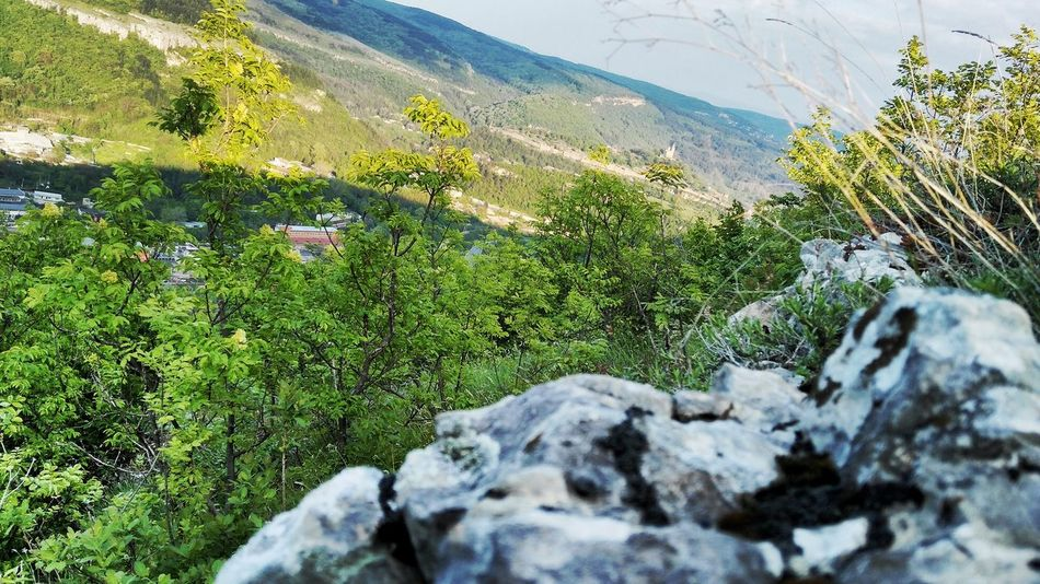 Nature Day No People Beauty In Nature Outdoors Mountain Tranquility High Angle View Growth Snow Green Color Scenics Water Close-up Sky